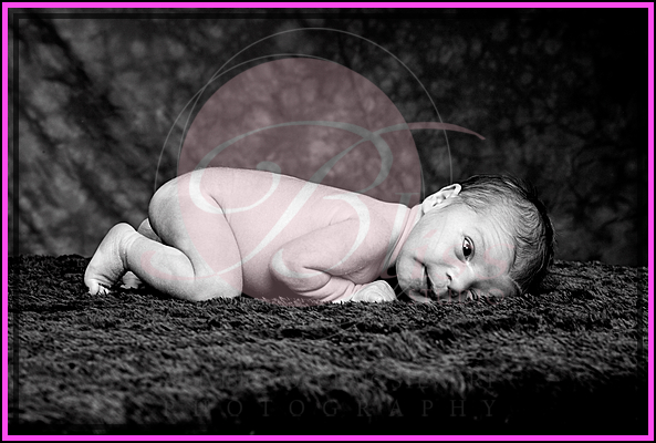 perth pregnancy photography